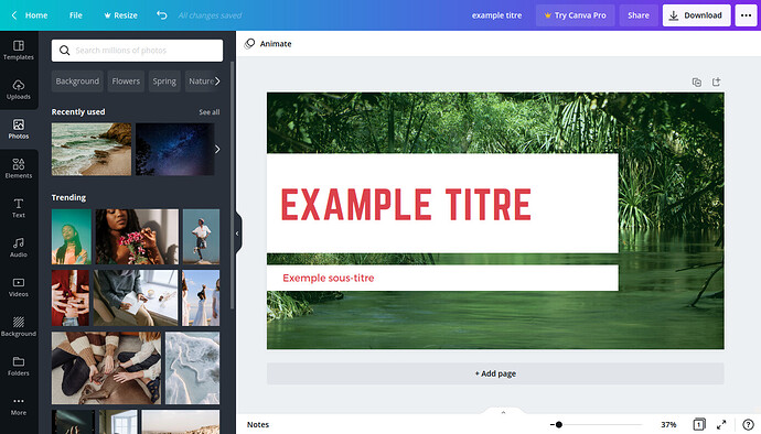 canva-interface-editeur